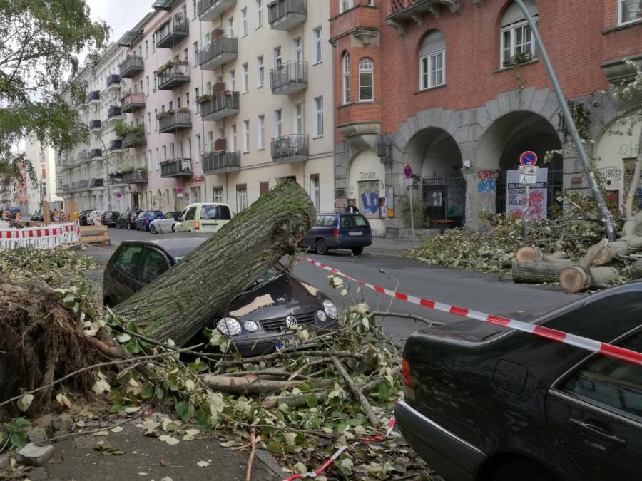 Wetterdienst warnt vor orkanartigen Böen