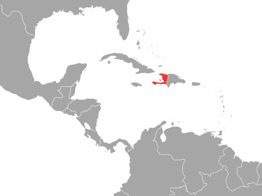Fast 2.000 Tote nach Erdbeben in Haiti