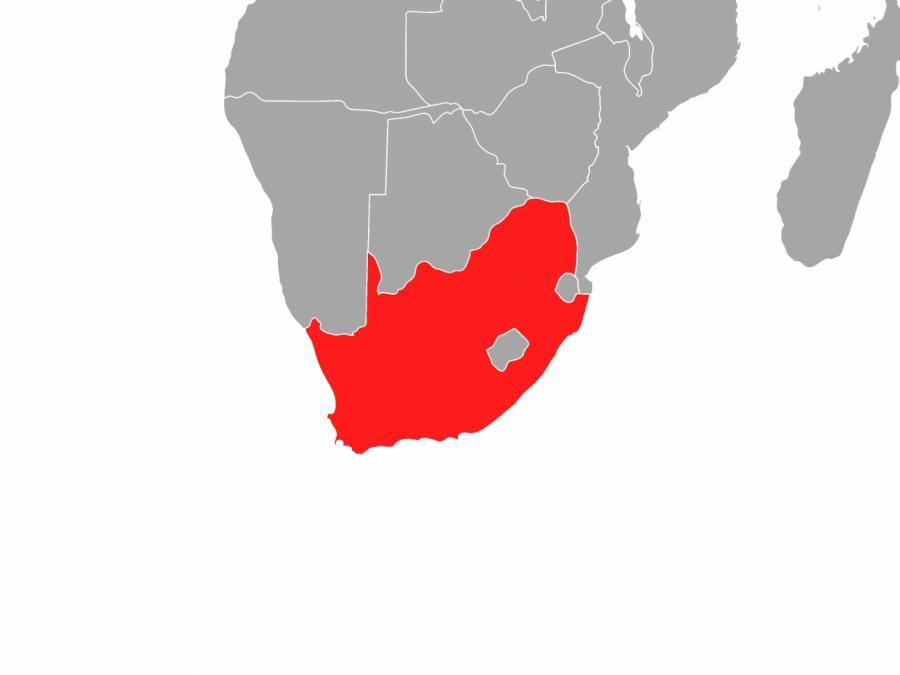 117 Tote bei Protesten in Südafrika - Lebensmittel werden knapp