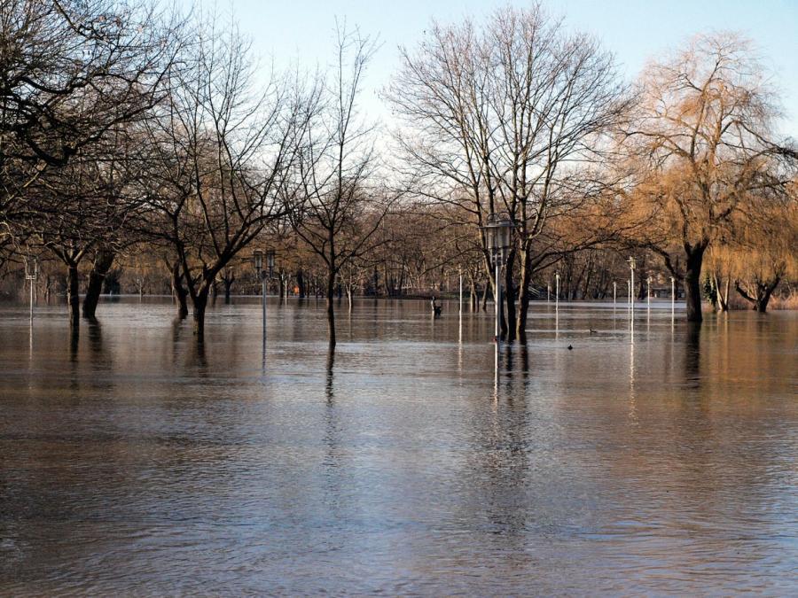Trittin verlangt massive Änderungen im Hochwasserschutz