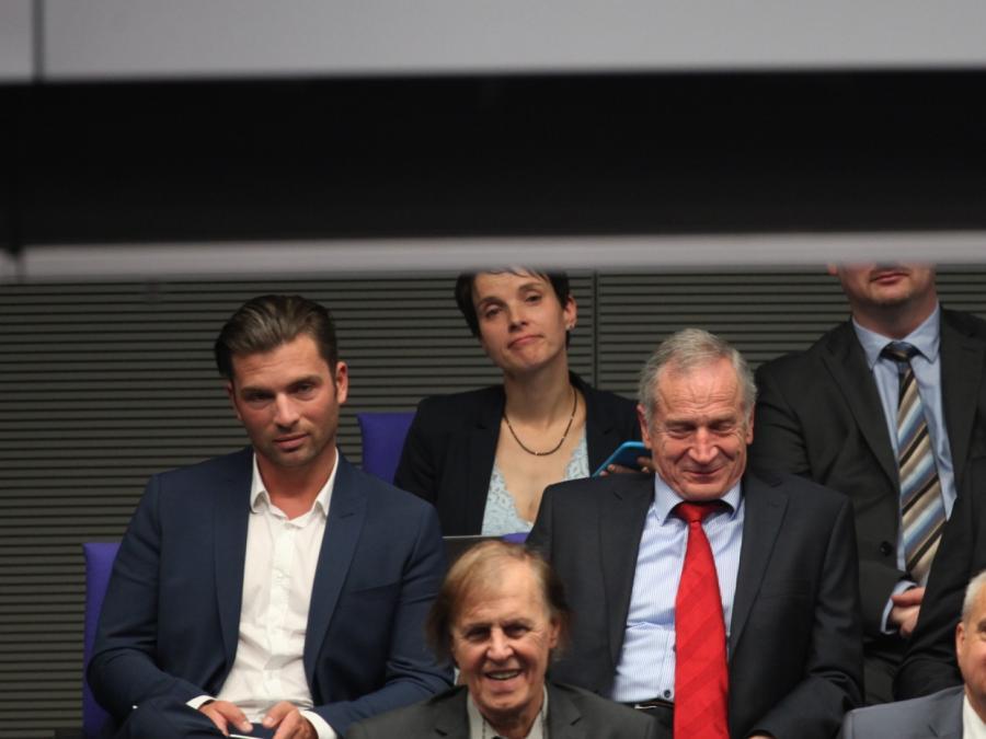 Petry kritisiert AfD