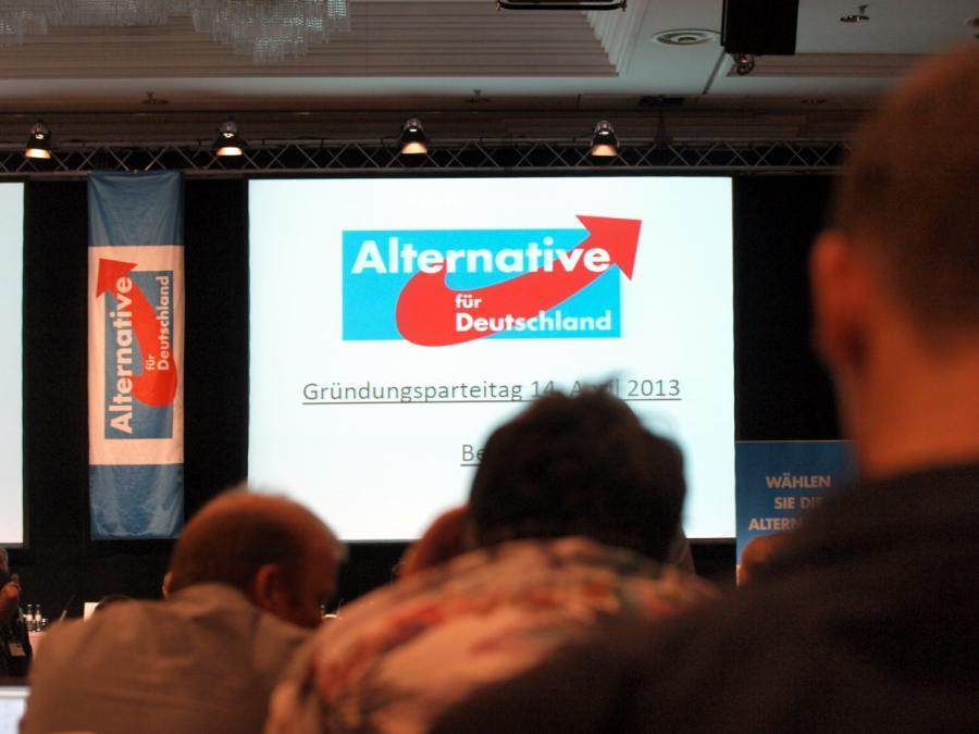 Weidel will AfD bis 2021 regierungsfähig machen