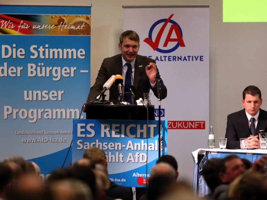 Politologe bezeichnet Poggenburg als bedeutende Figur für AfD