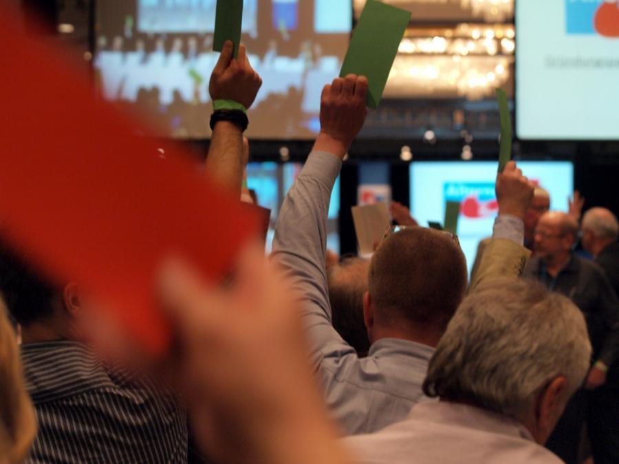 Familienunternehmer: AfD wird Wirtschaftspolitik kaum beeinflussen