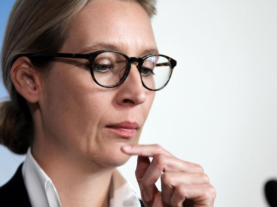 AfD-Fraktionschefin Weidel für Erhöhung der Hartz-IV-Sätze