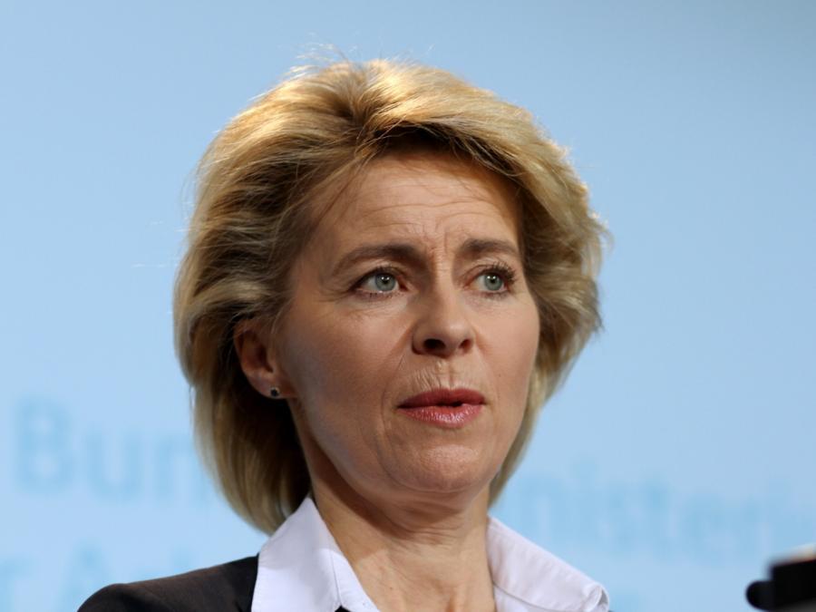 Von der Leyen will Green Deal für Europa