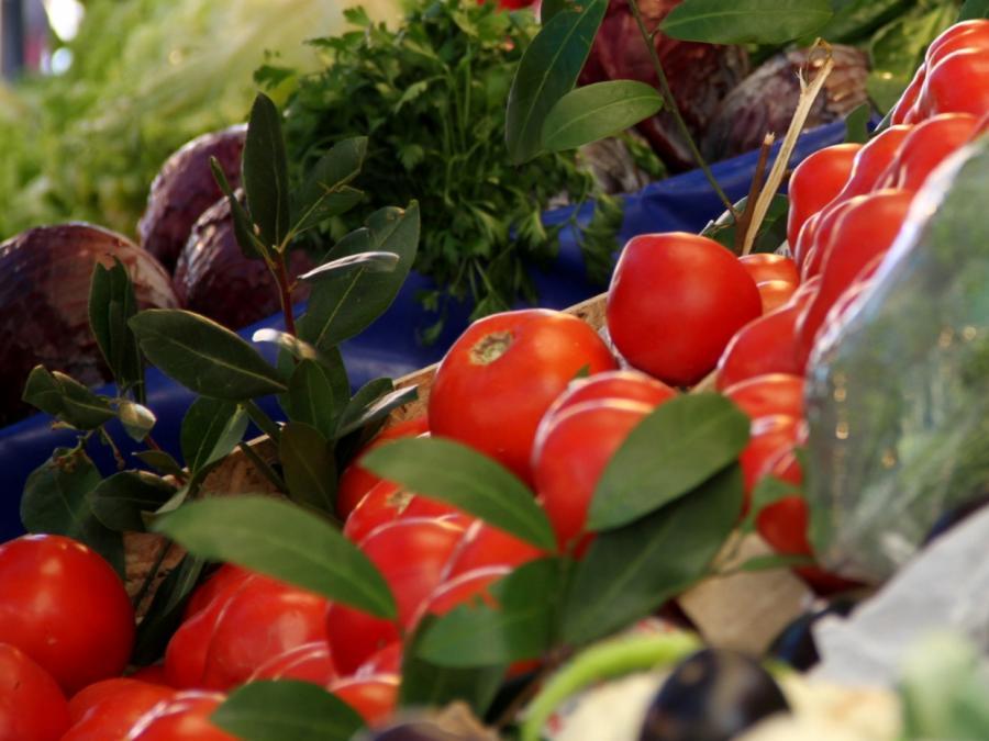 Al Gore: 90 Prozent noch nicht bereit für Öko-Ernährung