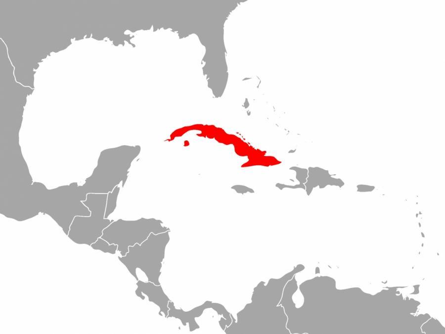 Starkes Erdbeben bei Kuba und Jamaika - Tsunami-Warnung