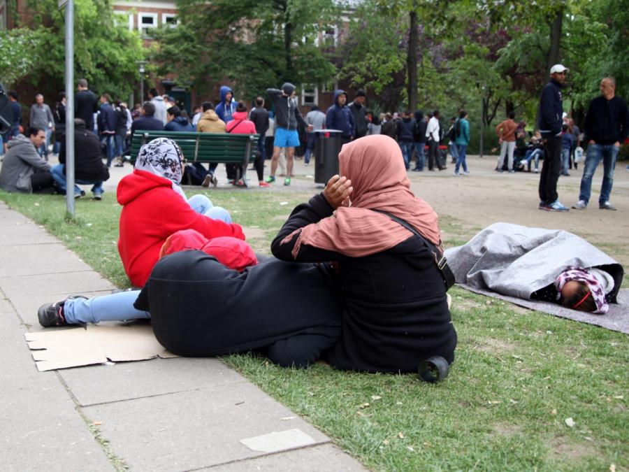 Grüne kritisieren Kampagne für freiwillige Rückkehr von Flüchtlingen