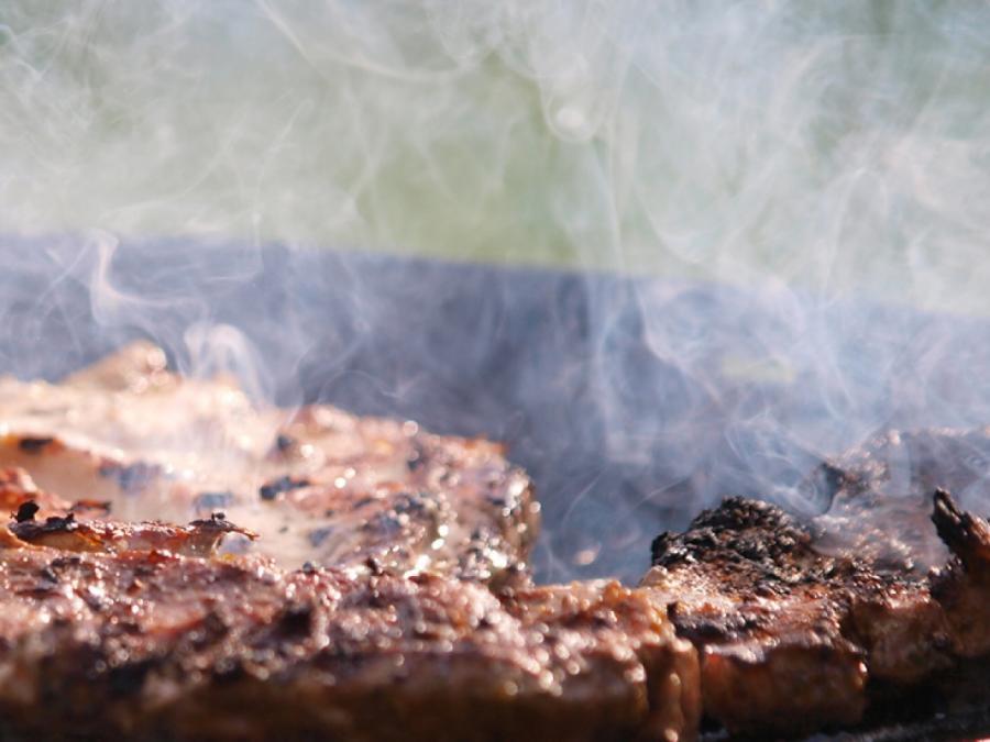 Mützenich: Union blockiert neue Regeln für Fleischindustrie