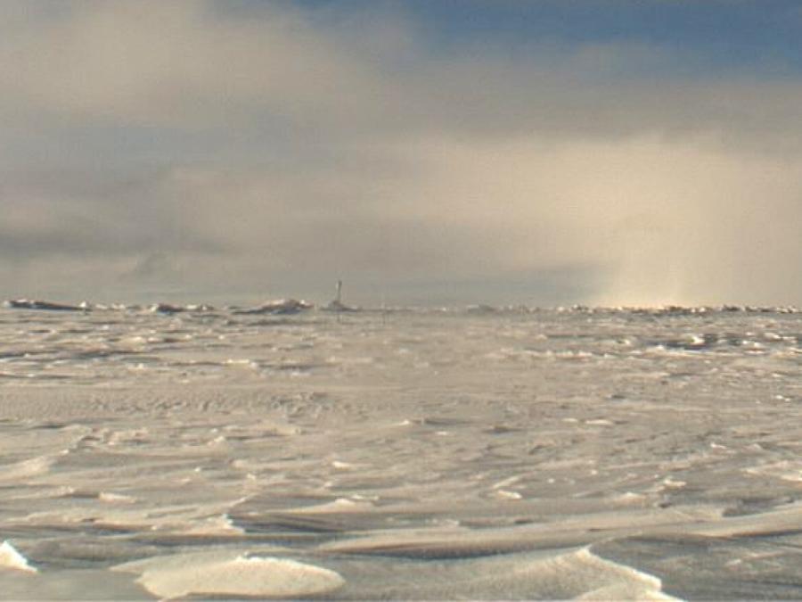 Polarforscher: Partyschiffe haben in der Arktis nichts zu suchen