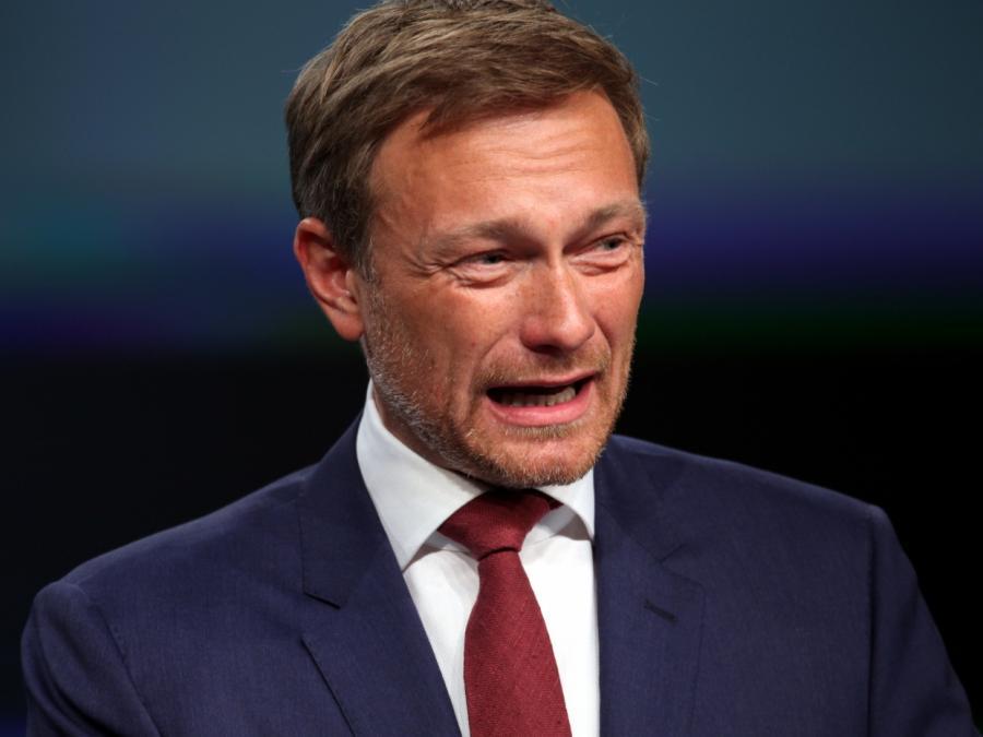 FDP-Chef kritisiert Subventionspraxis der Bundesregierung