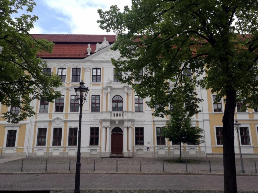 Rassistische Büttenrede: Linkspartei in Sachsen-Anhalt will Konsequenzen