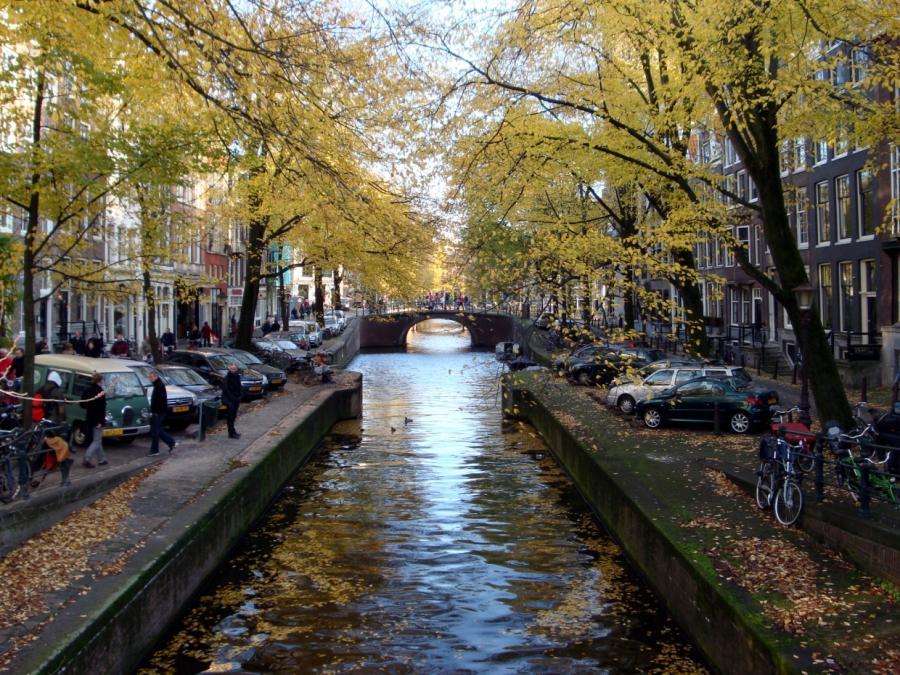 Amsterdam: Auto fährt in Menschenmenge - Mehrere Verletzte