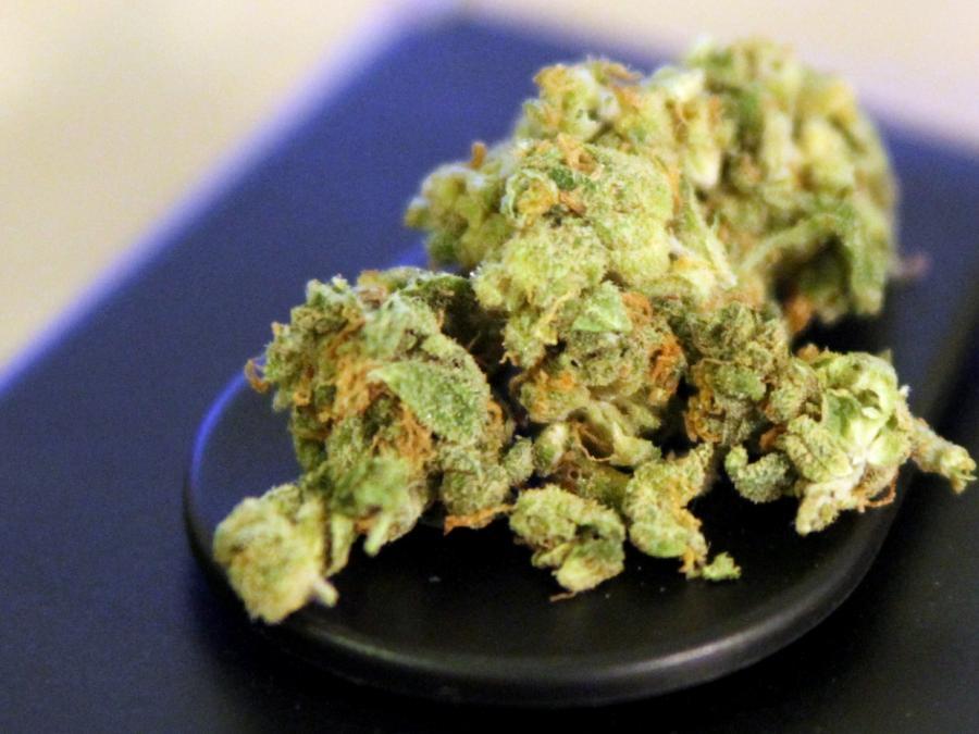 FDP will Cannabis-Modellprojekte ermöglichen