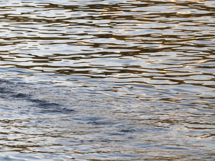 Bund will Wasserqualität von kleinen Seen und Bächen überwachen