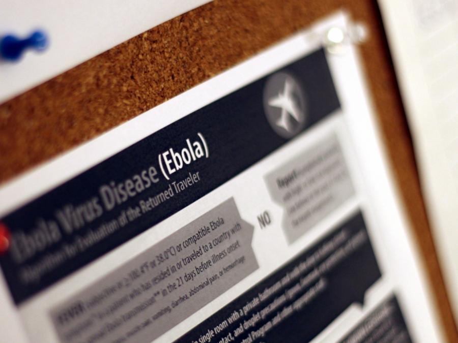 Bundesregierung will mehr für Seuchenabwehr tun