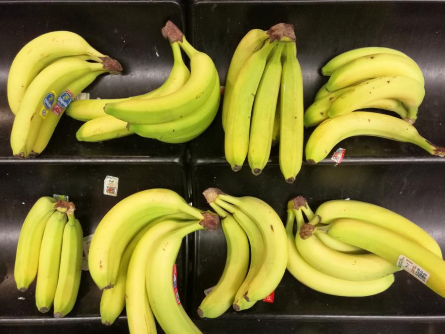 Forscher rechnet trotz Bananenkrise nicht mit Engpass