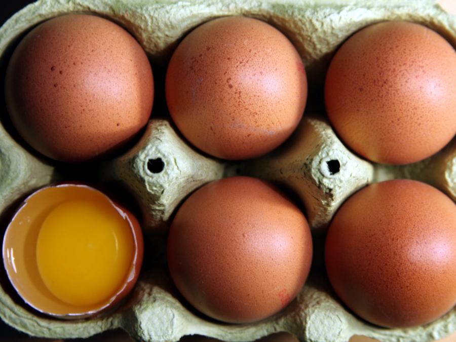 Eierproduktion im Jahr 2018 gestiegen