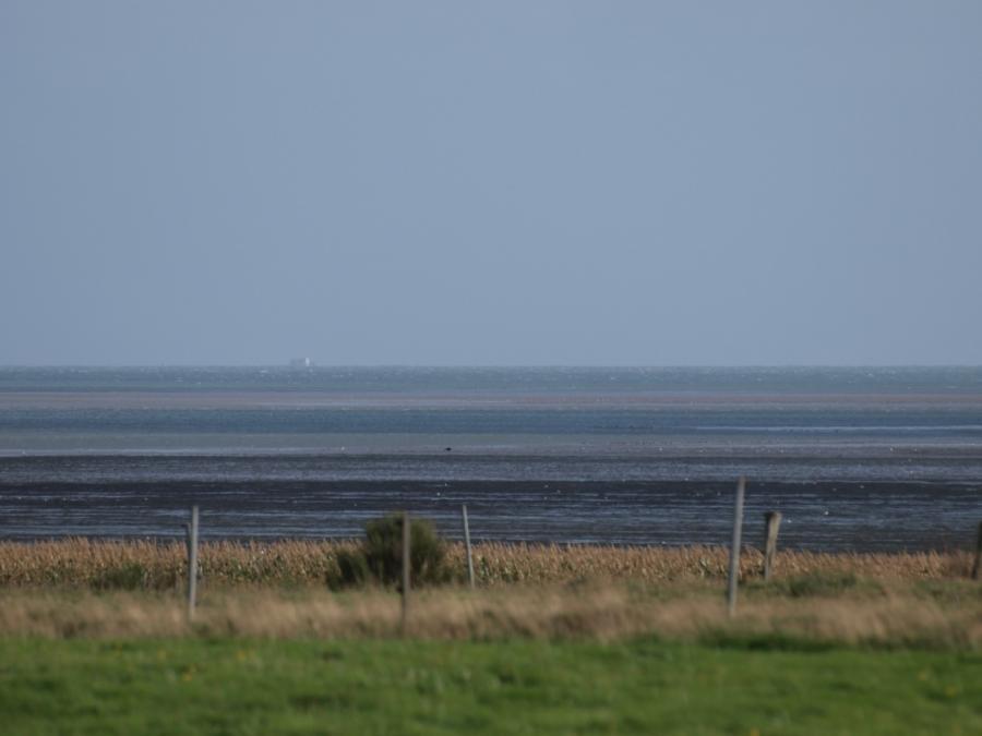 Regierung: Nordsee hat sich doppelt so schnell erwärmt wie Ozeane