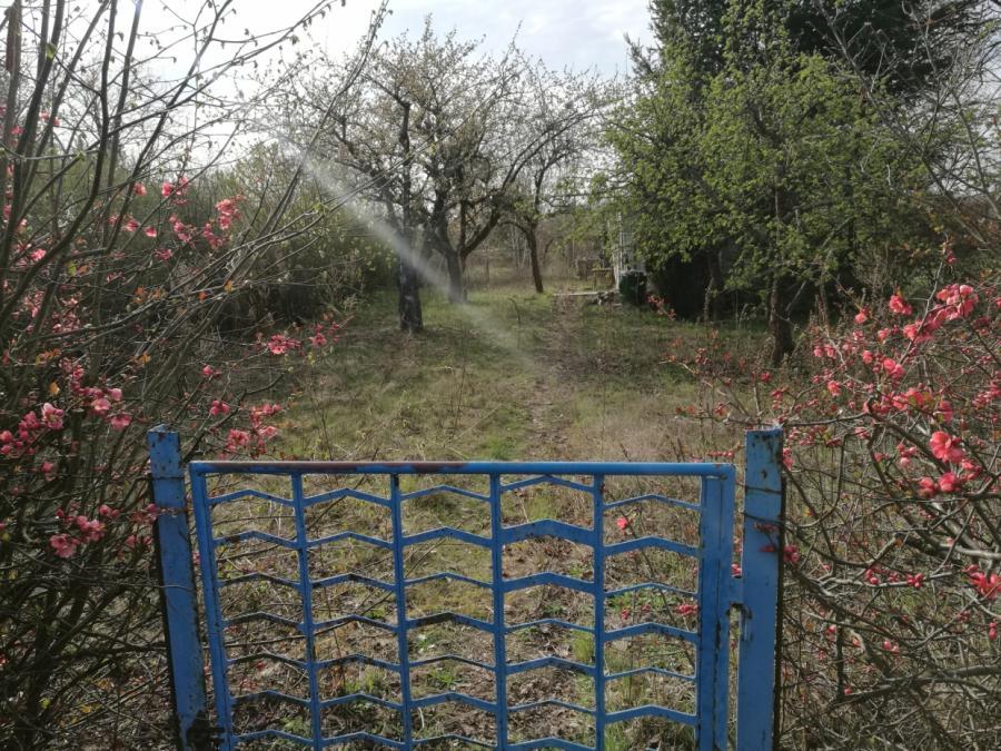 Gartengeräte retten Kärcher den Umsatz im ersten Halbjahr