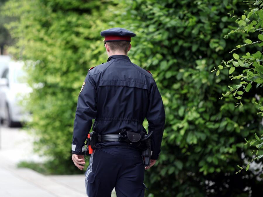 Deutsche Polizeibehörden unterstützen Österreich bei Ibiza-Affäre