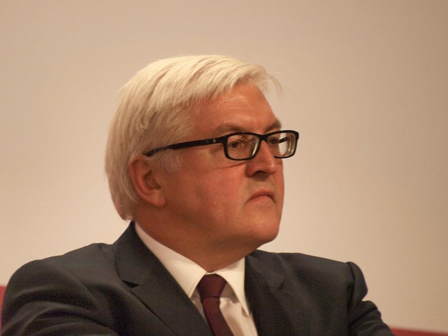 Steinmeier kritisiert Umgang der Medien mit der AfD