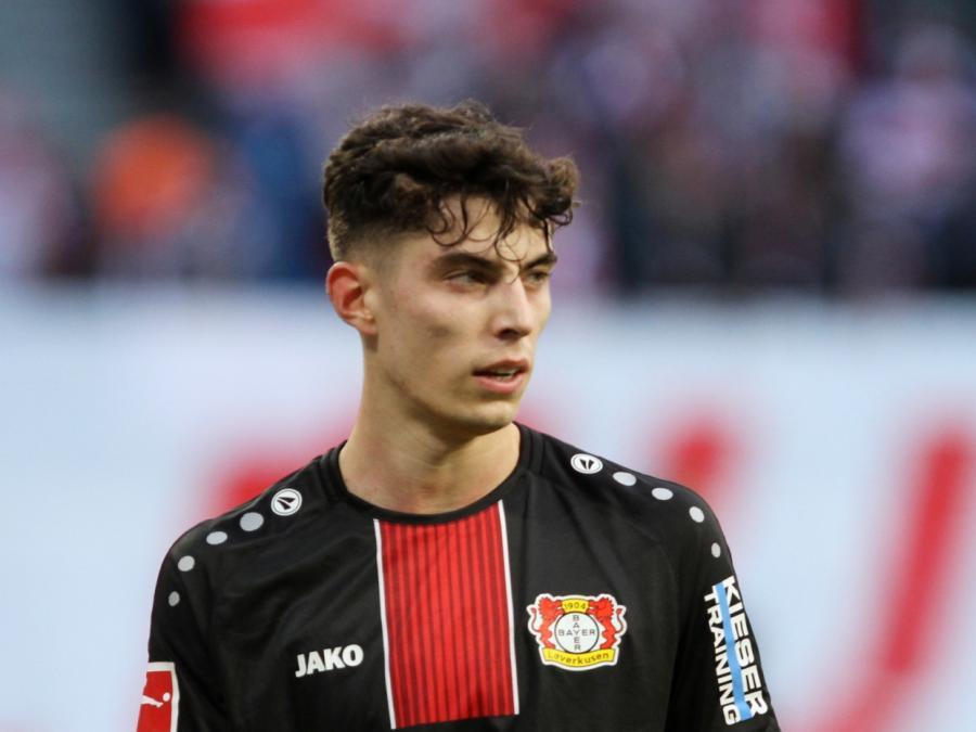 Leverkusen-Star Havertz ist großer Esel-Fan