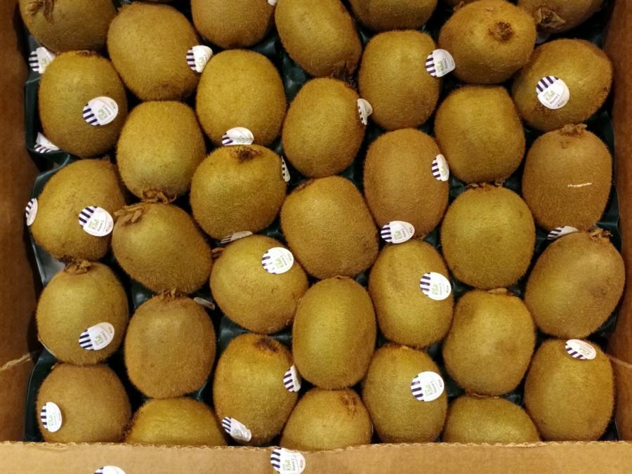 Importe von Kiwis im ersten Quartal zurückgegangen