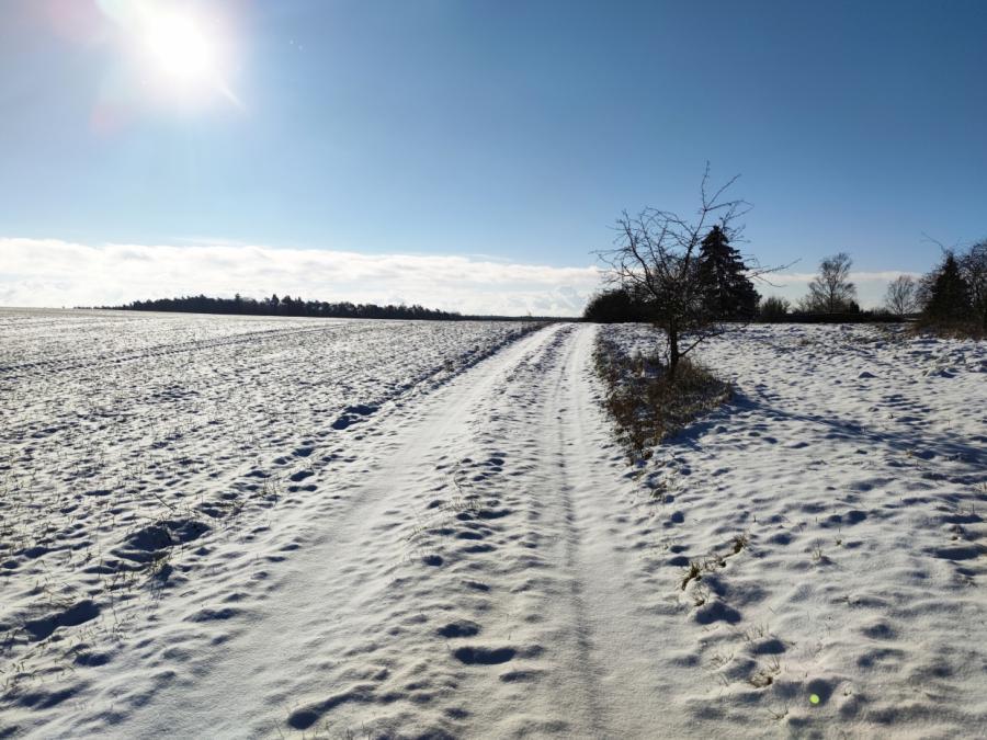 Wintereinbruch in Nordhälfte Deutschlands erwartet